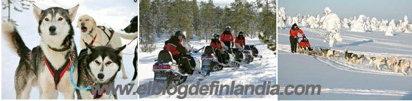 Safari en moto de nieve y huskys en Luosto