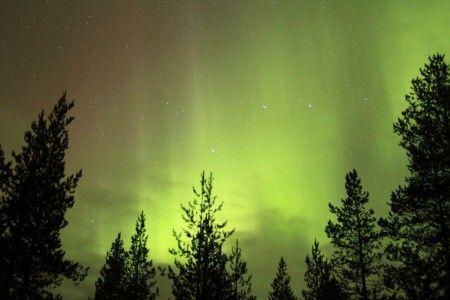 aurora boreal rovaniemi laponia finlandia. Autor: Wim Pawels