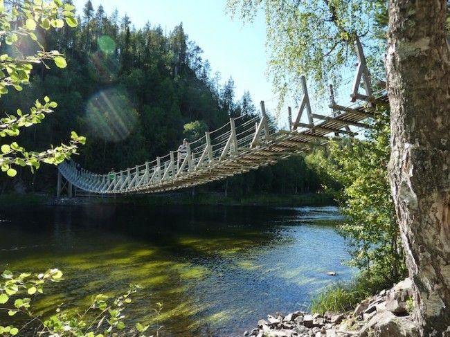 Uno de los muchos puentes colgantes de la ruta del oso, Laponia, Finlandia (Foto: Àlex Simòn)