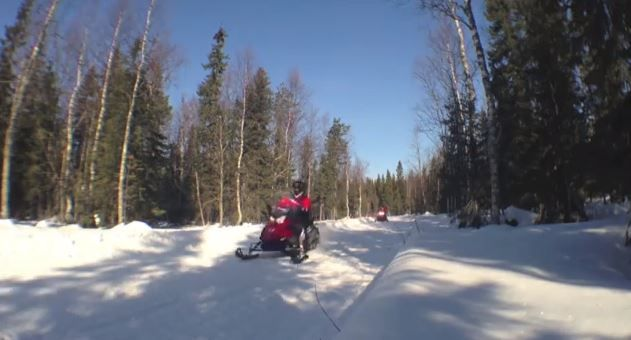 Excursión en moto de nieve en Laponia