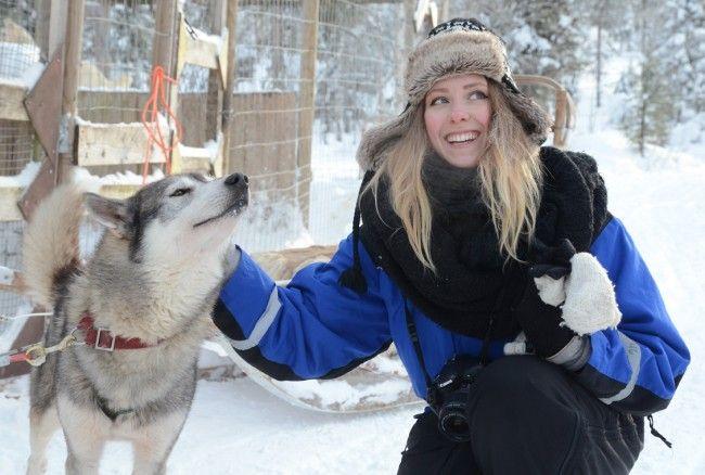 Safari de huskys en Laponia