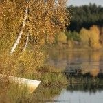 Orilla del Salmijärvi (lago). Laponia. Finlandia