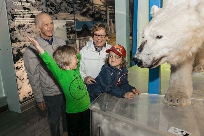 Visita al museo Arktikum