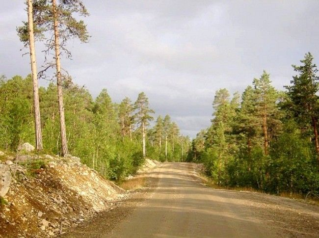 Carretera de Angeli a Karigasniemi