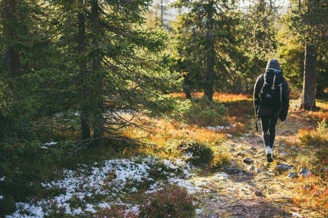 De excursion en Lemmenjoki