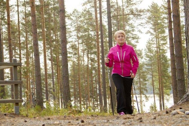 Trekking en el bosque de pinos de Anttolanhovi
