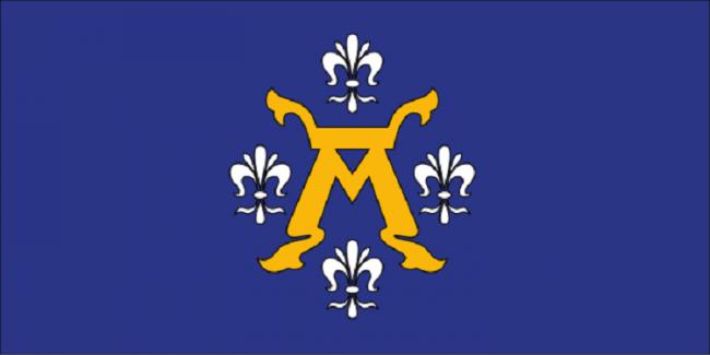 Bandera de Turku
