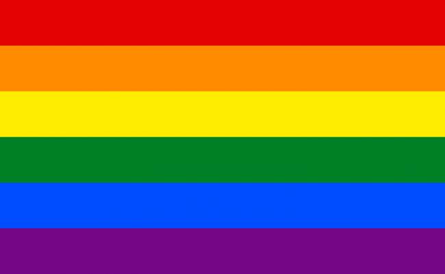 Bandera gay.