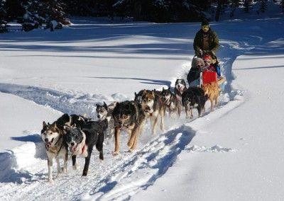 Actividades de invierno en Saariselkä