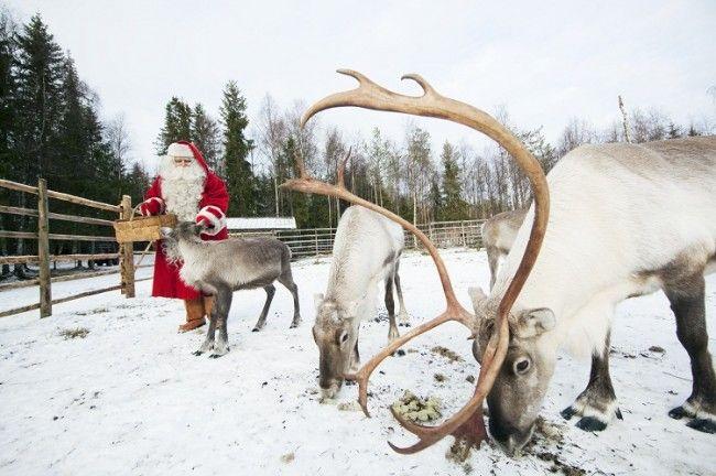 La antigua tradicion de la Navidad en Finlandia