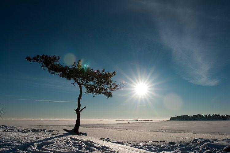 La primavera llegó a Finlandia