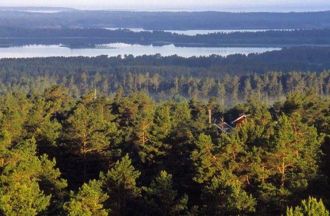 Bosques y lagos envuelven Finlandia