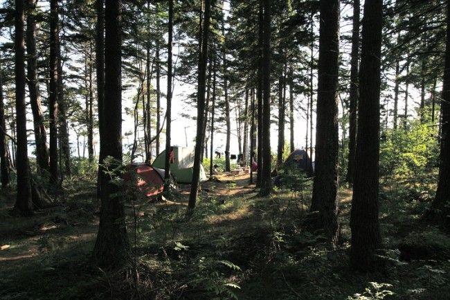 Camping libre en Kaunissaari