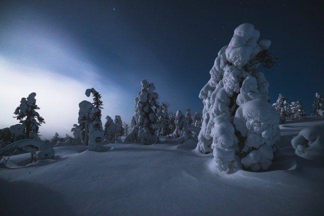 Noche polar