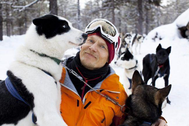 Durante un safari con perros husky