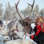 Sami en un safari de renos
