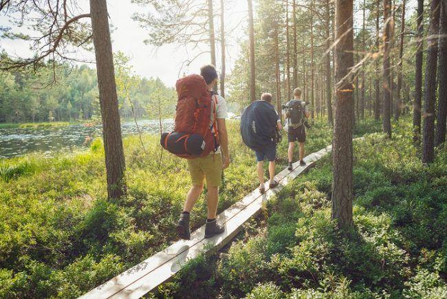 Atravesando una zona húmeda en el bosque de Finlandia