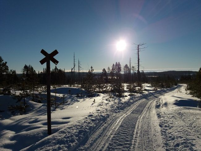 Carretera de moto de nieve
