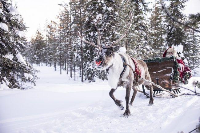 Papá Noel y su reno Rodolfo