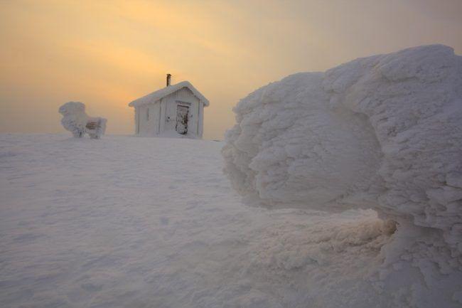 La colina de Valtavaara en Kuusamo. Árbol y cabaña