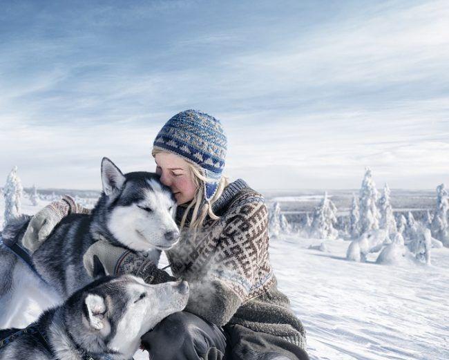 La musher Tinja Myllykangas y dos de sus perros