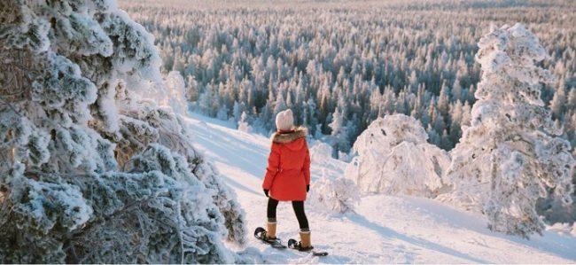 En Laponia las grandes extensiones de bosque dan la sensación de estar aislados