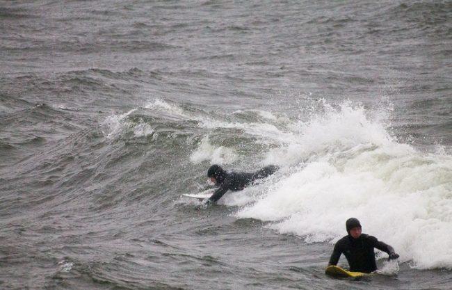 Surfistas en Hanko