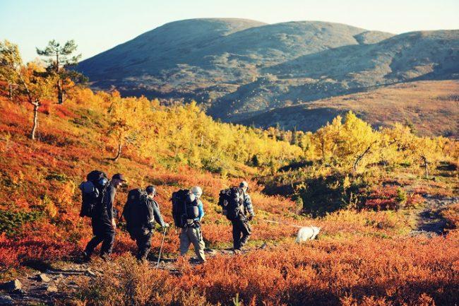 Practicando el senderismo en Laponia durante el otoño