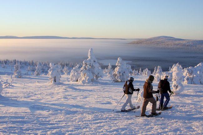 Excursión con raquetas de nieve en Levi
