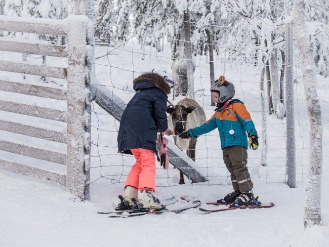 Esquí y naturaleza en Ruka