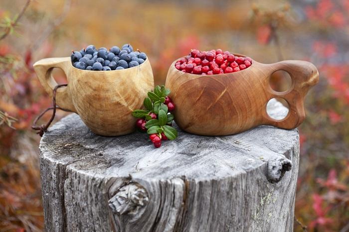 Las frutas del bosque de Finlandia