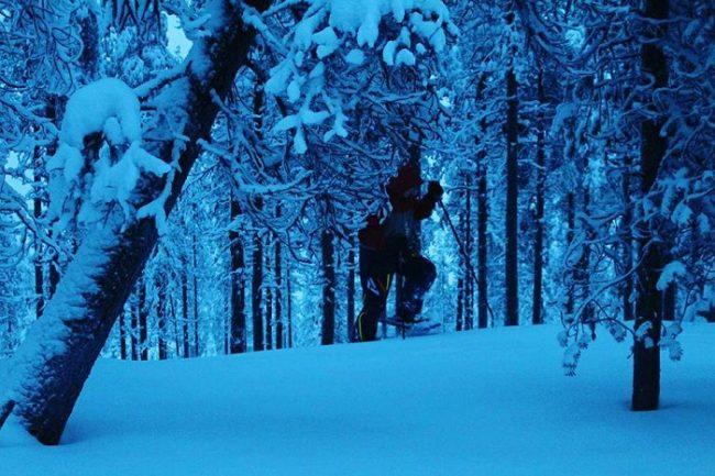 El bosque que rodea el lago Norvajärvi. Un lugar de encanto para realizar excursiones con raquetas de nieve