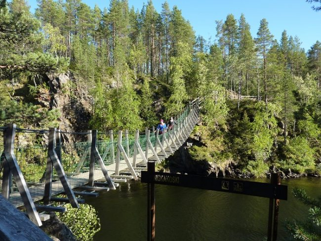 El camino del Pieni Karhunkierros tiene algunos puentes colgantes como este