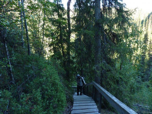 En la ruta del Pieni Karhunkierros hay buenos tramos de escaleras de subida y de bajada