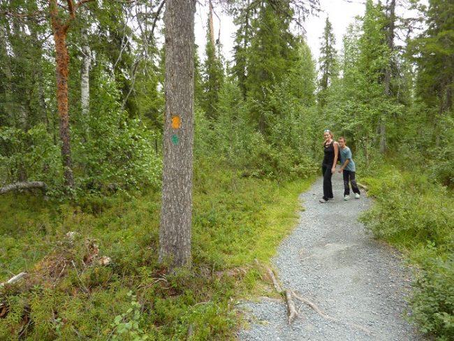 La ruta del Karhunkierros esta muy bien marcada