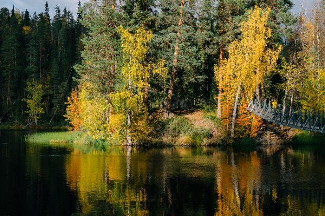 Tramo de la ruta Pieni Karhunkierros en otoño
