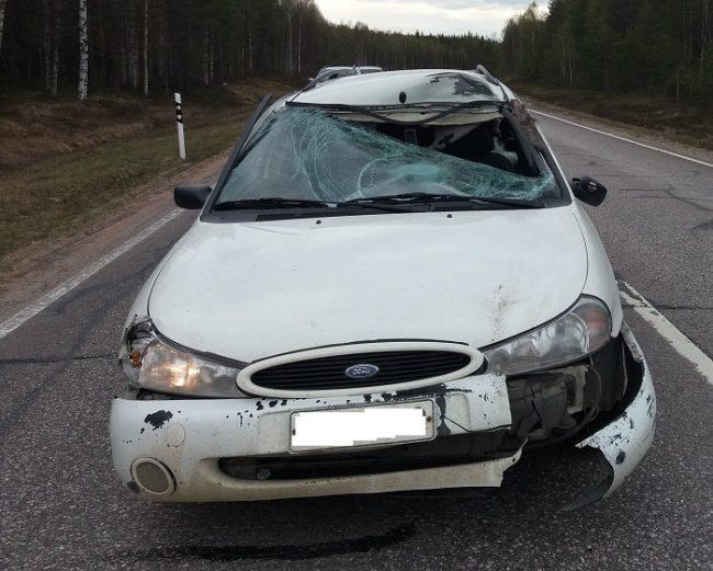 Accidente con un alce. En esta ocasión afortunadamente el conductor salió ileso