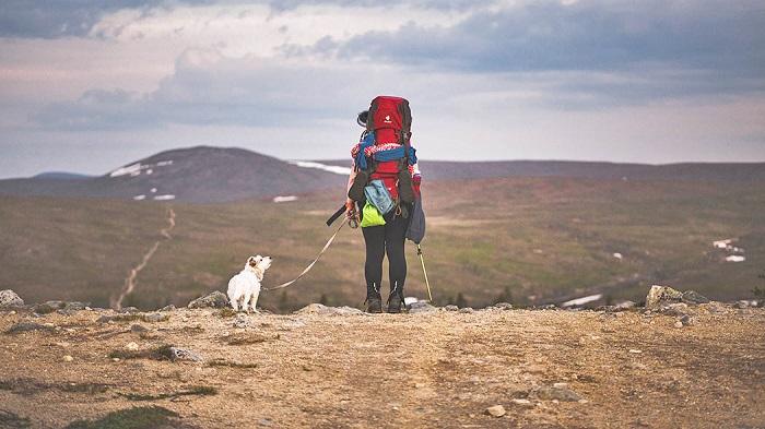 La ruta de Hetta a Pallas en Laponia