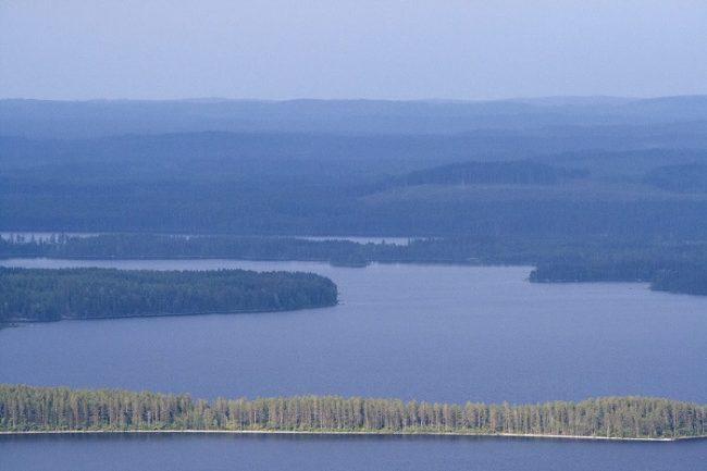 Aguas del lago Pielinen en el Parque Nacional de Koli. Paisaje nacional de Finlandia donde el agua es protagonista