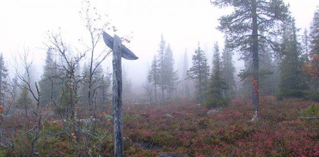 Una de las marcas del camino de Ruijanpolku