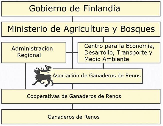 Organización de la cría de renos en Finlandia