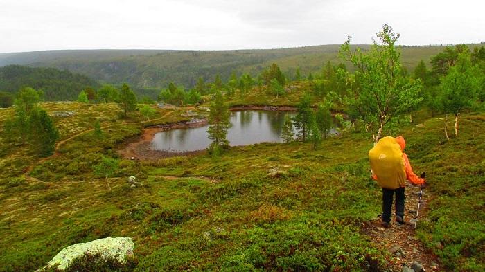 La reserva natural de Kevo en Laponia