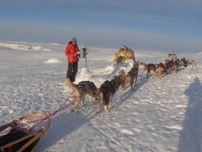En la cima del Halti con perros Husky