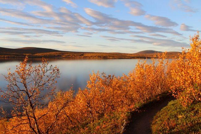 La Reserva Natural de Kevo en otoño