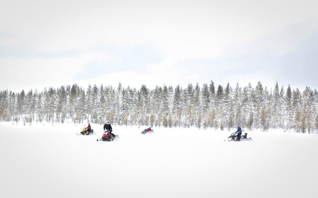 Aventura en motonieve en Ruka (Laponia Finlandesa)
