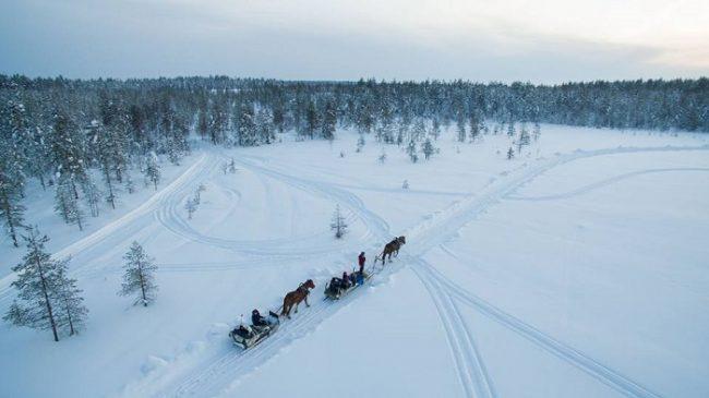 Paseo con caballos finlandeses en Ranua