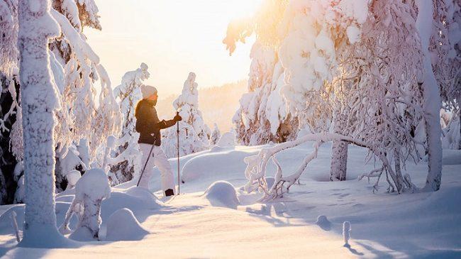 Excursión con raquetas de nieve por las colinas de Teerivaarassa, en el Parque Nacional de Syöte