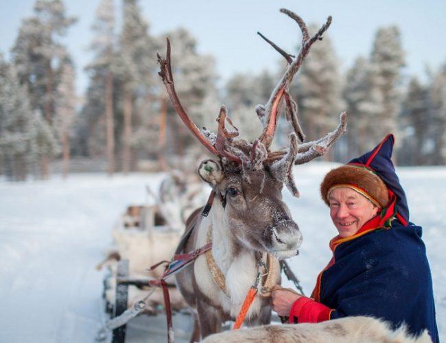 Hombre Sami y reno preparados para una excursión