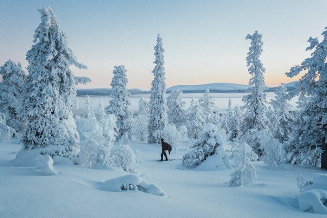 Excursión con raquetas de nieve en Ylläs
