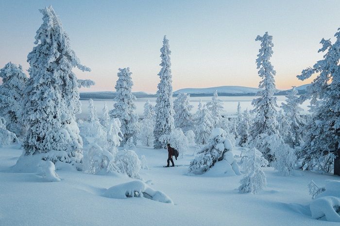 Excursiones con raquetas de nieve en Laponia